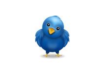 Uw Twitterpagina aanpassen aan uw (huis)stijl