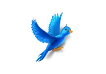 200 miljoen actieve Twitter-gebruikers
