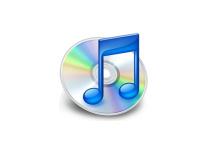 Muziekwinkel iTunes 10 jaar online