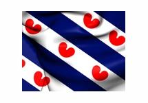 Eerste Friese domeinnaam online